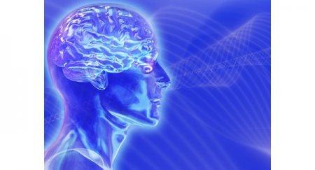 Как заставить мозг работать продуктивнее
