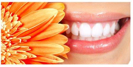 Обязательно ли ежегодно посещать стоматолога?